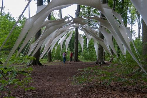 2. Internationaler Waldkunstpfad