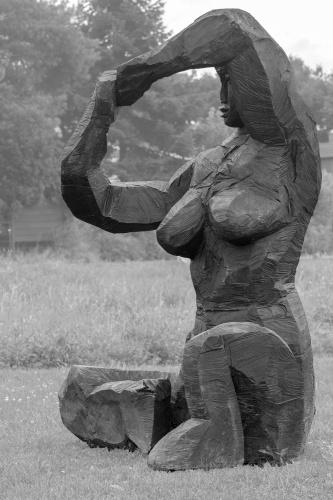 Dietrich Klinge, Polyanthe (SW)