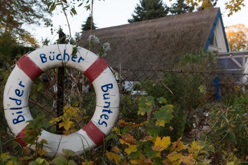 Bilder - Buecher - Buntes