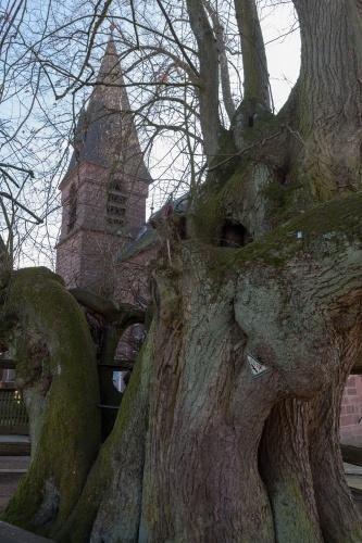 Tanzlinde in Himmelsberg mit Kirchturm