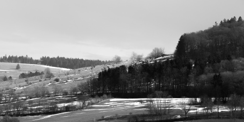 Blick von Westen auf die Huteflaechen am Steinkopf