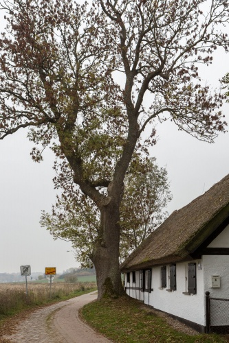 Bau- und Naturdenkmal