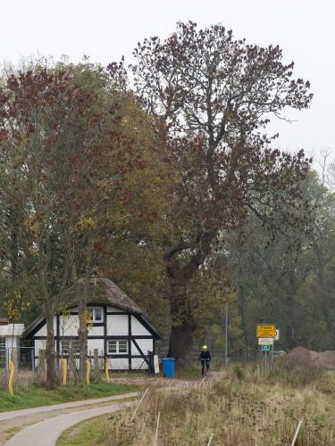 Natur- und Baudenkmal