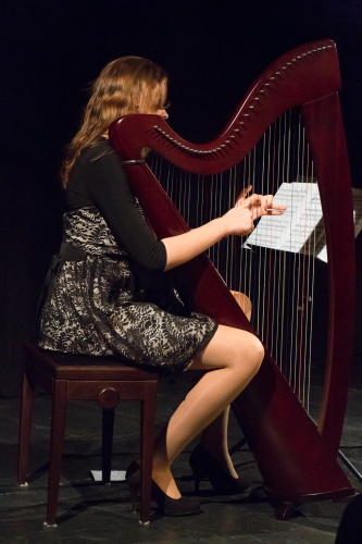 Sarah Elisabeth Burow - Harfe