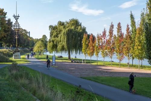 Mainufer-Park mit Doppelhelix