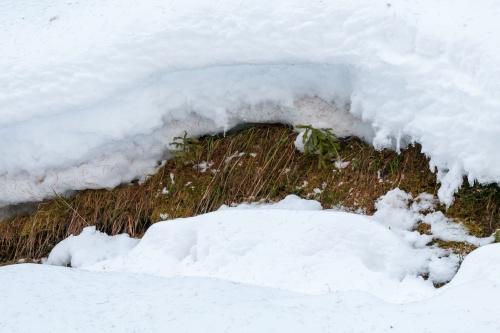 Formen im Schnee_-3
