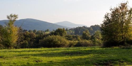 Odenwaldlicht