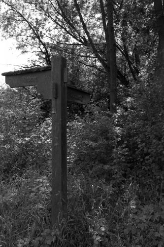 Dammweg oder Riedweg-
