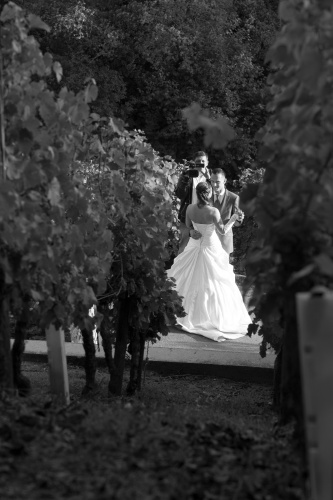Wein-Braut