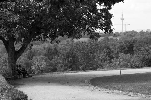 Maenner-Rast unterm Wallnussbaum