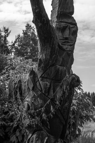 Skulptur aus Totholz