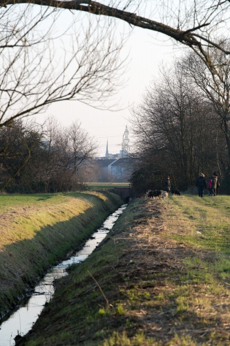 Dottenfeld- - Laufgraben