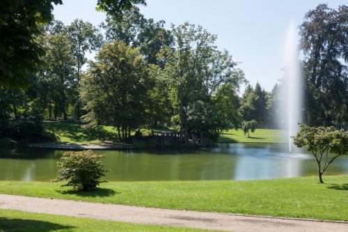 Teich und Fontaene im Schlosspark Philippsruhe