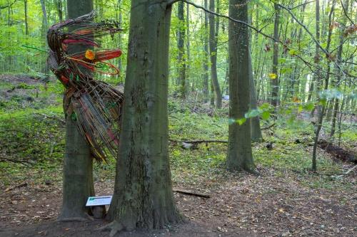 Wiktor Szostalo (Polen-USA), Treehuggers