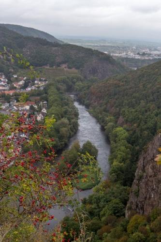 Blick vom Rheingrafenstein auf Bad Muenster am Stein