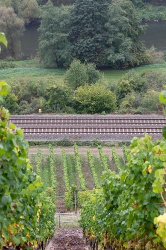 Weinberg, Bahnstrecke, Nahe