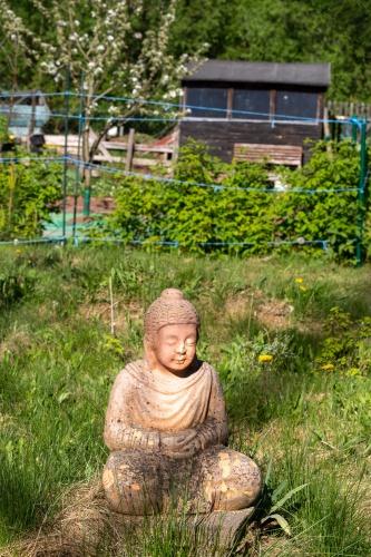 Buddha Im bayerischen Kleingarten