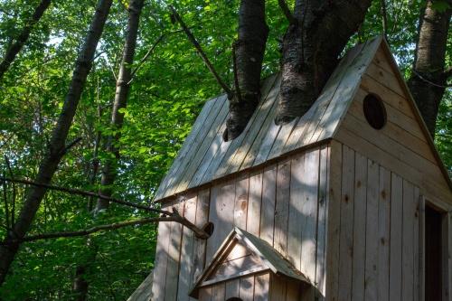 Laura Lio, houses-nests (Alfabeto-abeto)-3