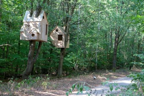Laura Lio, houses-nests (Alfabeto-abeto)-6