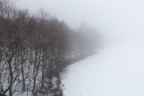 Rotes Moor vom Aussichtsturm