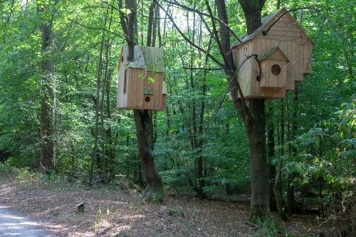 Laura Lio, houses-nests (Alfabeto-abeto)-8