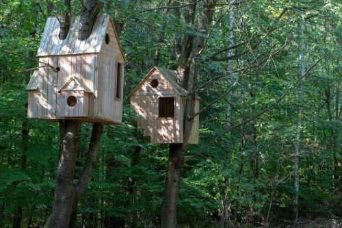 Laura Lio, houses-nests (Alfabeto-abeto)