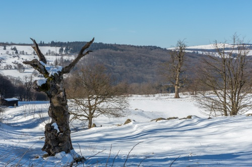 Schornecke - Winterwanderweg-9