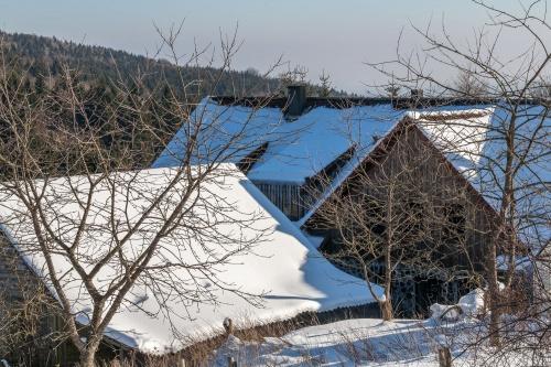 Holzberghof