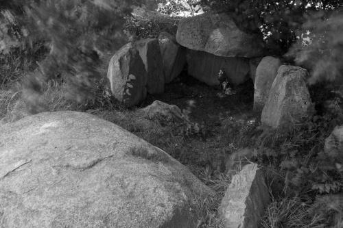 Grosssteingrab Lancken 3-3