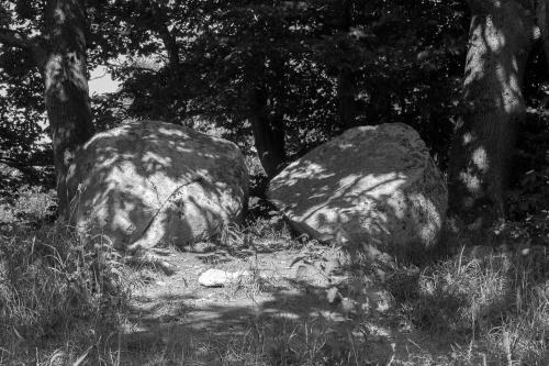 Grosssteingrab Preetz 3