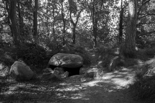 Grosssteingrab Preetz 4-2