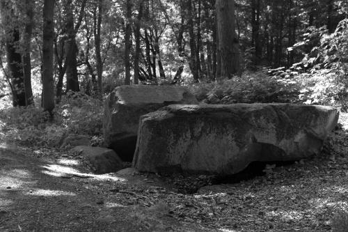 Grosssteingrab Ziegensteine-2
