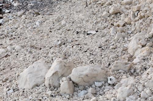 Erosion an der Kreidekueste-10