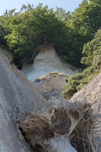 Erosion an der Kreidekueste-15