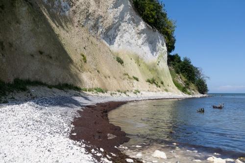 Erosion an der Kreidekueste-4