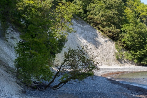 Erosion an der Kreidekueste-5