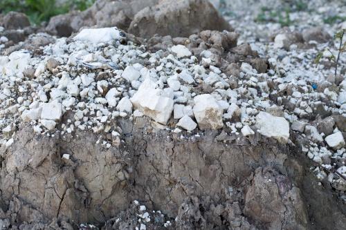 Erosion an der Kreidekueste-9