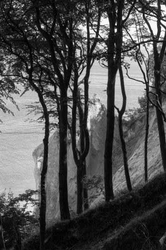 Durchblicke zur Ostsee-2
