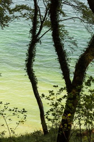 Durchblicke zur Ostsee-4