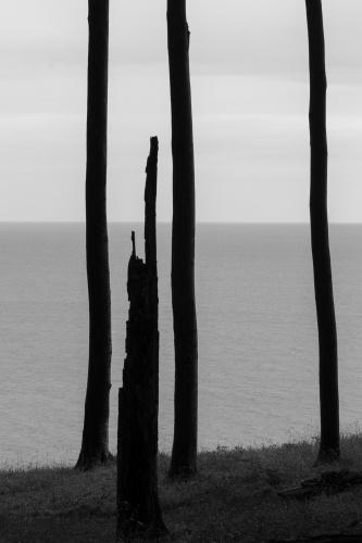 Durchblicke zur Ostsee-6