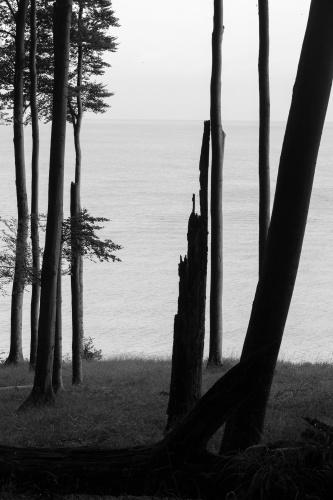 Durchblicke zur Ostsee-8