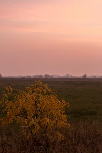 Wolken - Land 15